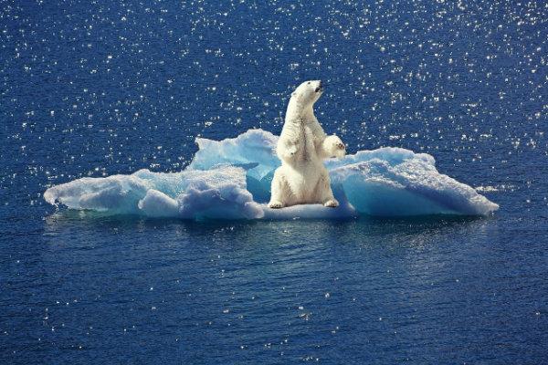 Energieeffiziente Webandwendungen der Umwelt zu Liebe